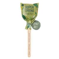 Modern Sprout Seed Pops | Culinary