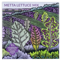 Seed Mix Packets (Variety)