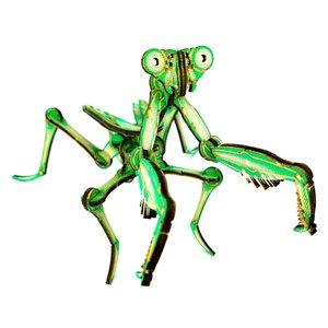 JCR Work Wood Figure | Mantis