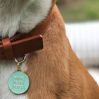 Two Tails Pet Co Pet ID Tag | That is so Fetch