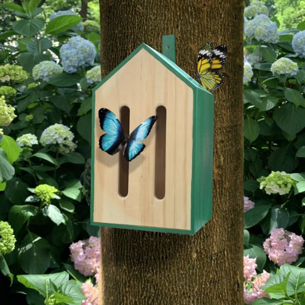 Kikkerland Butterfly House   Little