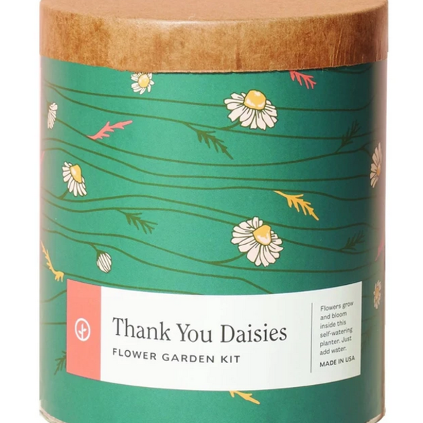 Waxed Planter   Thank You Daisies