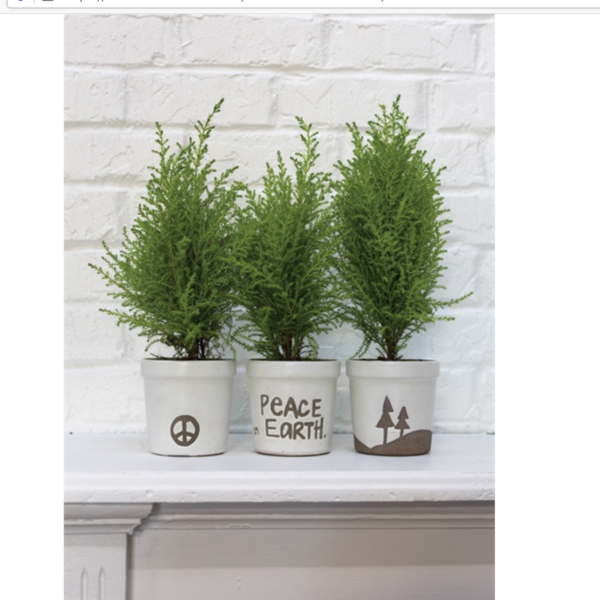 Accent Decor Wish Pot | Peace on Earth