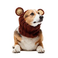 Zoo Snoods Zoo Snood | Grizzly Bear