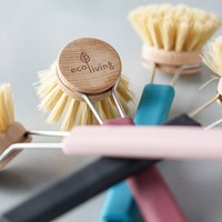ecoLiving Dish Brush   Colored Handle