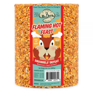 Mr. Bird Bird Seed Cylinder | Flaming Hot Feast | Large