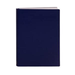 Paper Thinks Notebook | Recycled Leather Large Ruled