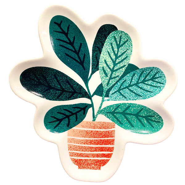 Now Designs Shaped Dishes | Let it Grow