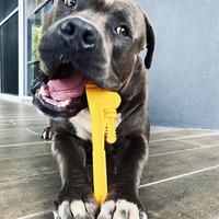 Dog Toy | Nylon Pipe Wrench