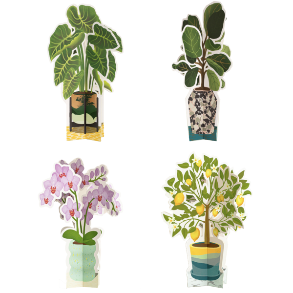 Seltzer Goods Paper Plants | Large