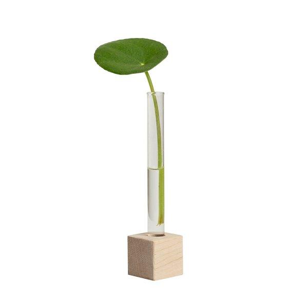Plant Stand | Propagation Station
