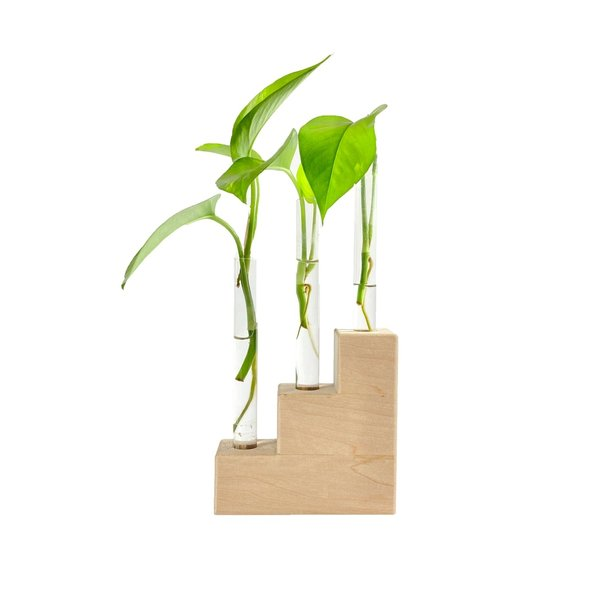 Hold Onto Your Plants Plant Riser   Propagation Station
