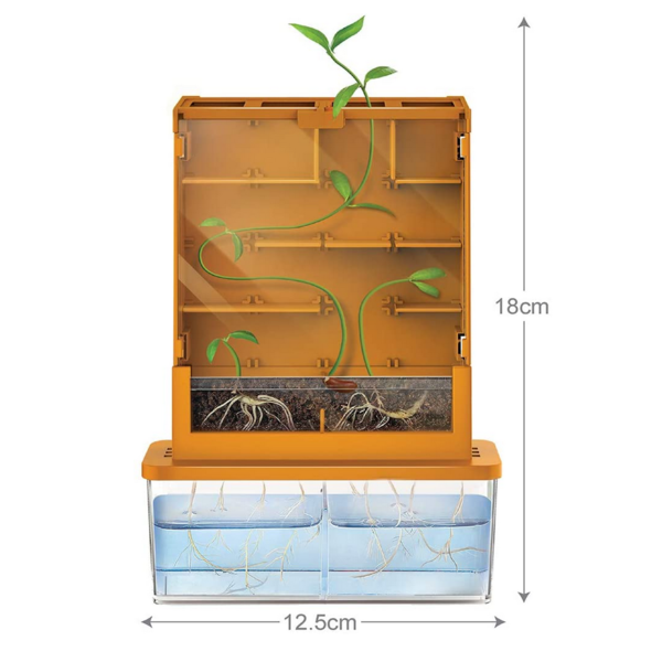 Toysmith Group Kit   Grow-A-Maze