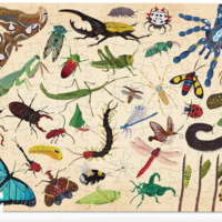 Crocodile Creek Puzzle | 100pc | 36 Insects
