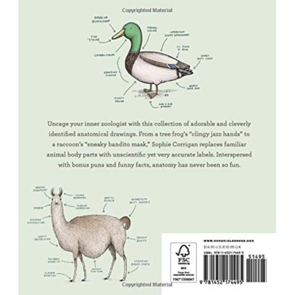 Chronicle Books Book   Animal Anatomy