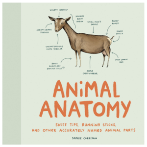 Chronicle Books Book | Animal Anatomy
