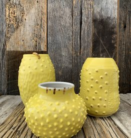 Fanta Watson Vase218 006