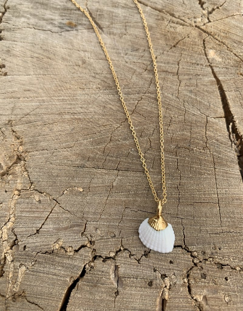 Rise Hawaiian Shell Necklace