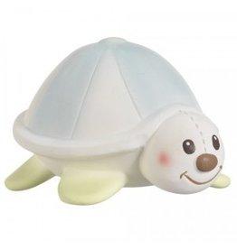 Calisson Vulli- Margot the turtle