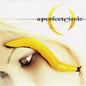 A Perfect Circle -- Thirteenth Step LP