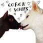 Coachwhips – Bangers Vs. Fuckers LP