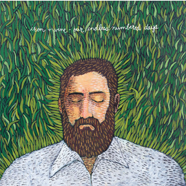 Iron & Wine -- Our Endless Numbered Days LP with download
