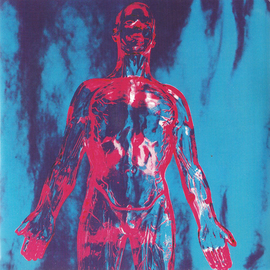 "Nirvana -- Sliver 7"""