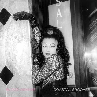 Blood Orange – Coastal Grooves LP