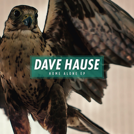 DAVE HAUSE (paint it black) - HOME ALONE 7''