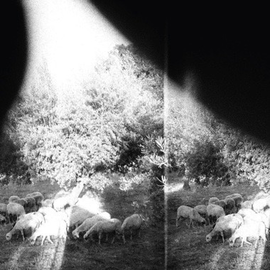 Godspeed You! Black Emperor -- Asunder Sweet And Other Distress LP with download
