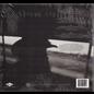 Chris Stapleton -- Traveller LP