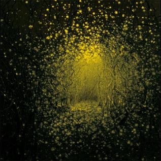 Antlers -- Burst Apart LP with download