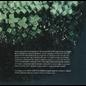 Alvvays – Alvvays LP blue vinyl