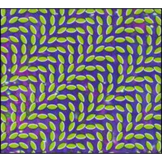 Animal Collective --  Merriweather Post Pavilion LP