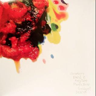 Animal Collective – Strawberry Jam LP