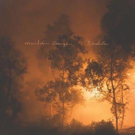 Mandolin Orange - Blindfaller LP