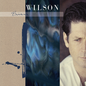 Brian Wilson – Brian Wilson LP extended version blue swirl vinyl