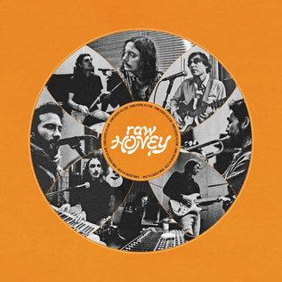 Drugdealer – Raw Honey LP