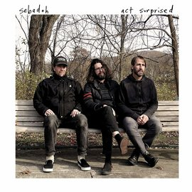 Sebadoh ‎– Act Surprised LP orange vinyl