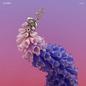 Flume - Skin LP