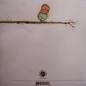 Colour Revolt -- Plunder, Beg, And Curse LP