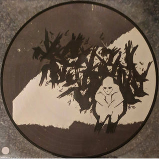 Andrew Jackson Jihad ‎– Can't Maintain. LP picture disc