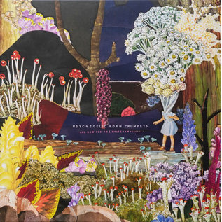 Psychedelic Porn Crumpets – And Now For The Whatchamacallit LP 180 gram