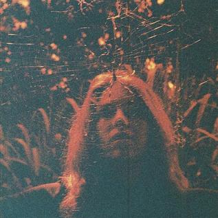 Turnover -- Peripheral Vision LP