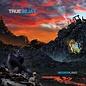Negativeland - True False LP