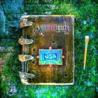 Anamanaguchi – [USA] LP