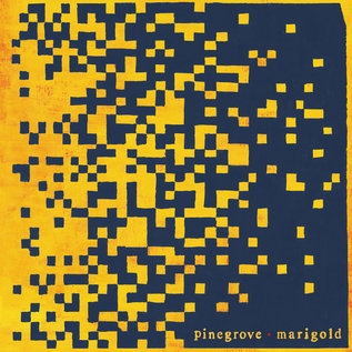 Pinegrove ‎– Marigold LP yellow vinyl