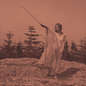 UNKNOWN MORTAL ORCHESTRA - II LP with download