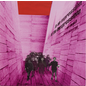 Blonde Redhead -- In An Expression Of The Inexpressible LP
