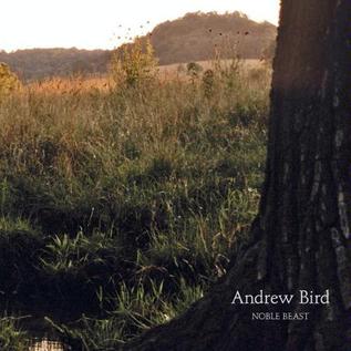 ANDREW BIRD -- NOBLE BEAST LP with download